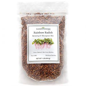 Rainbow Heirloom Seed Co. Heirloom Seed 1 Rainbow Radish Sprouting Seeds Mix | Heirloom Non-GMO Seeds for Sprouting & Microgreens | Contains Red Arrow, Purple Triton & White Daikon Radish Seeds 1 lb Resealable Bag | Rainbow Heirloom Seed Co.