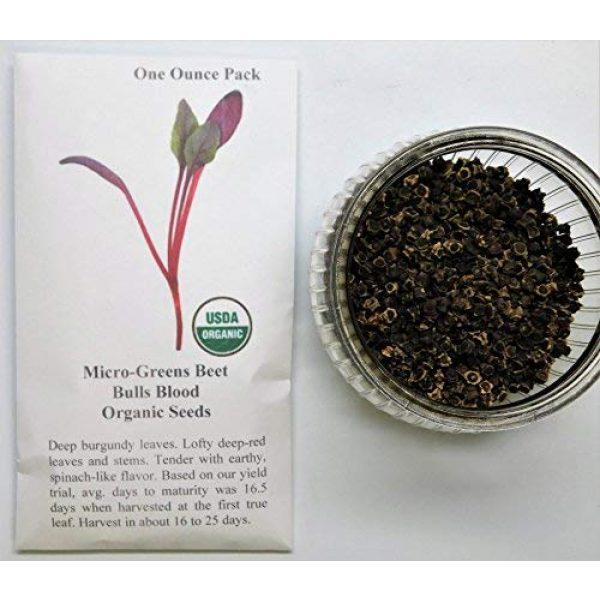 David's Garden Seeds Heirloom Seed 2 David's Garden Seeds Microgreens Beet Bull's Blood 7455 (Red) Non-GMO, Heirloom Seeds One Ounce Pack