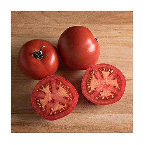 David's Garden Seeds  1 David's Garden Seeds Tomato Slicing Nepal 7733 (Red) 50 Non-GMO