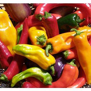 Ohio Heirloom Seeds Heirloom Seed 1 Hot Pepper Seed Assortment- 6 Varieties, Over 300 Seeds, All Non-GMO Heirloom Varieties