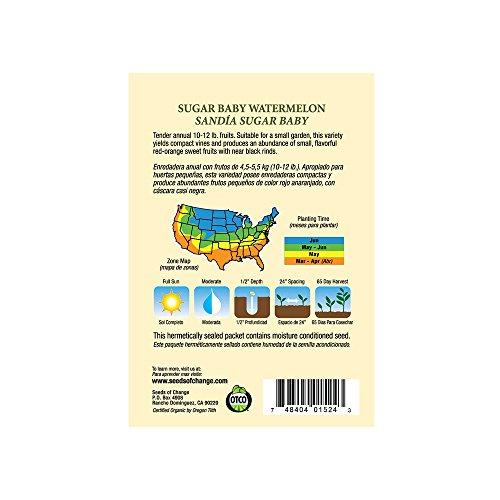 SEEDS OF CHANGE  3 Seeds of Change Certified Organic Sugar Baby Watermelon