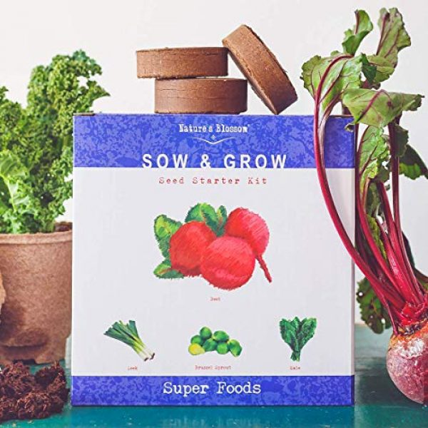 Nature's Blossom Organic Seed 1 Grow 4 of The Healthiest Vegetables from Seed - Brussel Sprouts, Kale, Beets & Leeks. Superfood Sprout Kit W/Soil, Organic Planters. Outdoor Garden Gift for Beginner Gardeners, Vegans, Vegetarians