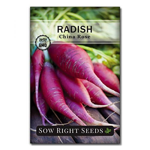 Sow Right Seeds Heirloom Seed 3 Sow Right Seeds - Radish Seed Collection for Planting - Champion, Watermelon, French Breakfast, China Rose, and Minowase (Diakon) Varieties, Non-GMO Heirloom Seed to Plant Home Vegetable Garden