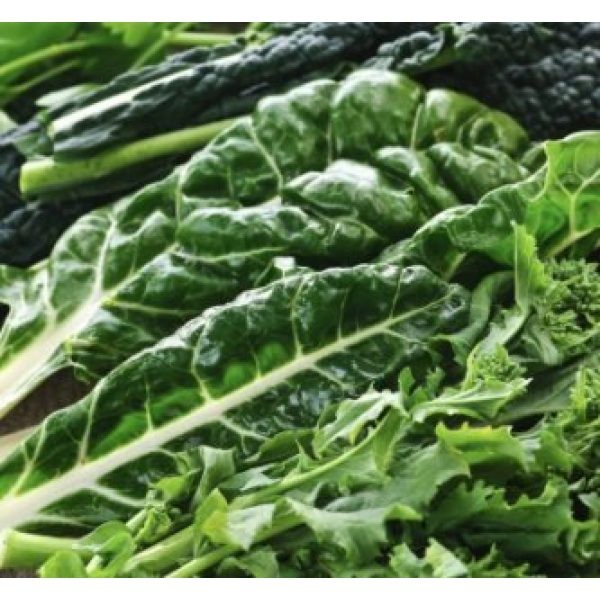 Isla's Garden Seeds Heirloom Seed 3 Forage Premier Kale Seeds, 1000+ Premium Heirloom Seeds, Rich Delicious Leafy Kale! Fantastic Addition to Your Home Garden! (Isla's Garden Seeds), Non GMO, 90% Germination, Highest Quality Seeds