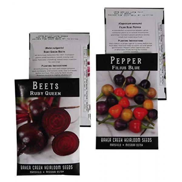Western Premium Brands Heirloom Seed 3 Baker Creek Heirloom Vegetable Seeds 2020 for Planting Home Garden Variety Pack with Planting Guide Kit - Tomato, Lettuce, Carrot, Peppers, Radish, Peas, Beet, Bush Bean