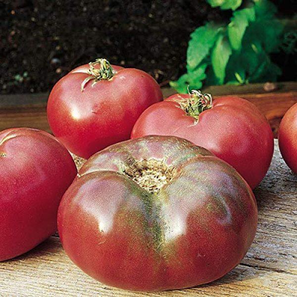 Burpee Heirloom Seed 1 Burpee Cherokee Purple' Heirloom Large Slicing Tomato Rich Flavor, 50 Seeds