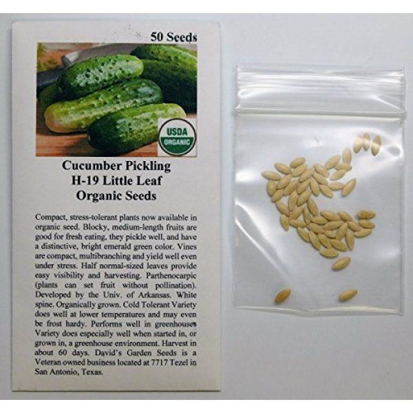 David's Garden Seeds Organic Seed 2 David's Garden Seeds Cucumber Pickling H-19 Little Leaf 3311 (Green) 50 Non-GMO, Open Pollinated Seeds