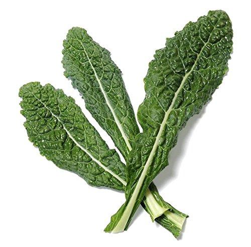 Marde Ross & Company  1 700 Lacinato Kale Seeds - Heirloom