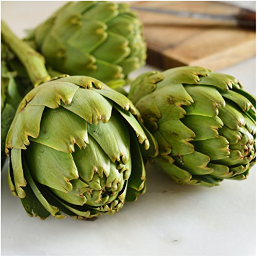 Non-GMO Mary Washington Asparagus & Green Globe Artichoke Seed Packet Collection (100+ Fresh Garden Seeds for Planting) Heirloom