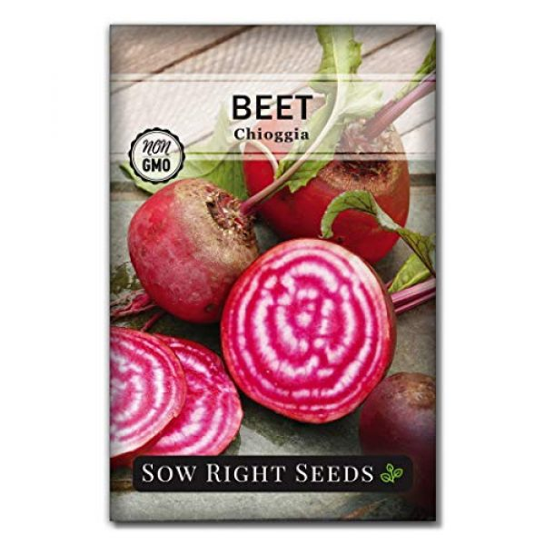 Sow Right Seeds Heirloom Seed 6 Sow Right Seeds - Beet Seed Collection for Planting - Detroit Dark Red, Golden Globe, Chioggia, and Cylindra Varieties Non-GMO Heirloom Seeds to Plant a Home Vegetable Garden - Great Gardening Gift