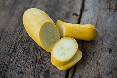 Isla's Garden Seeds  2 Summer Early Prolific Straightneck Squash Seeds(Yellow)! - 50+ Premium Heirloom Seeds - ON Sale! - Cucurbita Pepo - (Isla's Garden Seeds) - Non GMO - 90% Germination - Total Quality