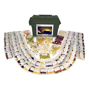 Survival Essentials Heirloom Seed 1 Survival Essentials 144 Variety Ultimate Heirloom Seed Vault for Survival and Preparedness - 23,335+ Non-GMO Heirloom Seeds Packed in Superior Ammo Can for Long-Term Storage and Maximum Shelf Life