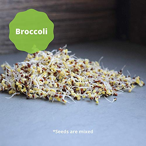 Broccoli & Alfalfa: Cooking