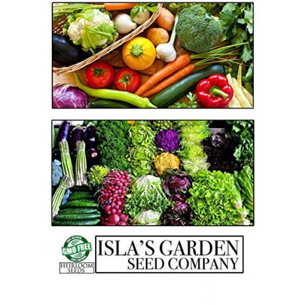 Isla's Garden Seeds Heirloom Seed 6 Golden Wax Bush Bean Plant Seeds, 50+ Premium Heirloom Seeds, (Isla's Garden Seeds), 90% Germination, Non GMO, Highest Quality Seeds