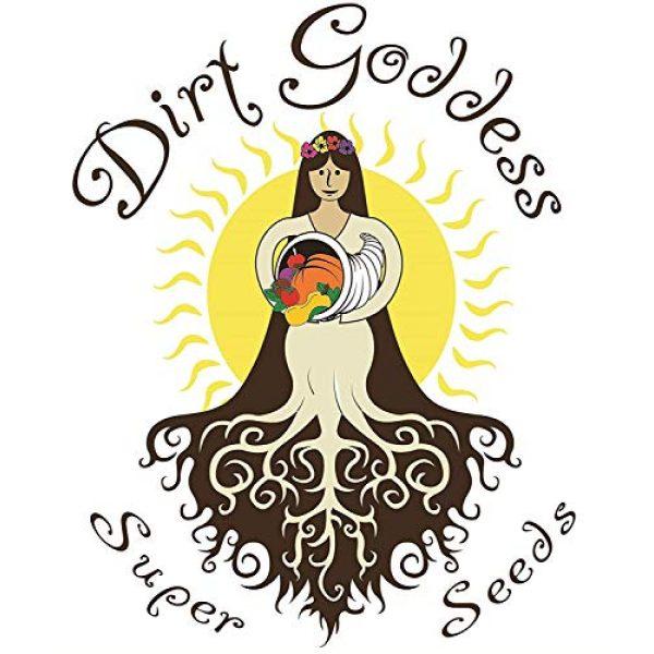 Dirt Goddess Super Seeds Organic Seed 2 Organic Bulk Spinach Seeds (1/2 Lb)