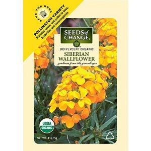 SEEDS OF CHANGE  1 Seeds Of Change 8175 Certified Organic Siberian Wallflower