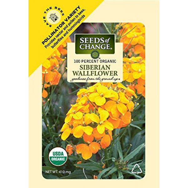 SEEDS OF CHANGE Organic Seed 1 Seeds Of Change 8175 Certified Organic Siberian Wallflower