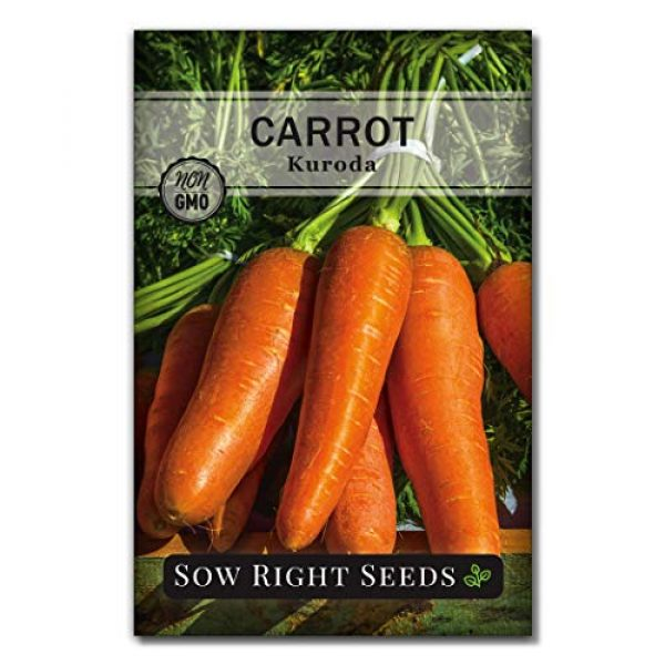 Sow Right Seeds Heirloom Seed 2 Sow Right Seeds - Carrot Seed Collection for Planting - Rainbow, Nantes, Imperator, and Kuroda Varieties. Non-GMO Heirloom Seeds to Plant a Home Vegetable Garden, Great Gardening Gift