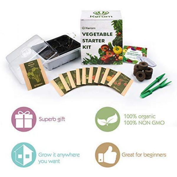 KORAM Organic Seed 4 KORAM Vegetable Garden Starter Kit - 10 Organic Salad Seeds Organic Growing Kit DIY Gardening Starter Set with Everything a Gardener Needs for Growing Tomatoes Broccoli Cucumber for Christmas Gift