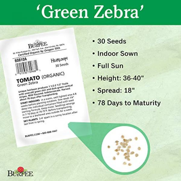 Burpee Organic Seed 3 Burpee 'Green Zebra' Organic   Green Slicing Tomato   30 Seeds