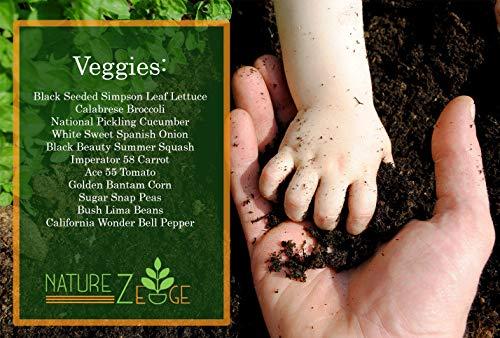 4800+ Seeds for Gardening Vegetables