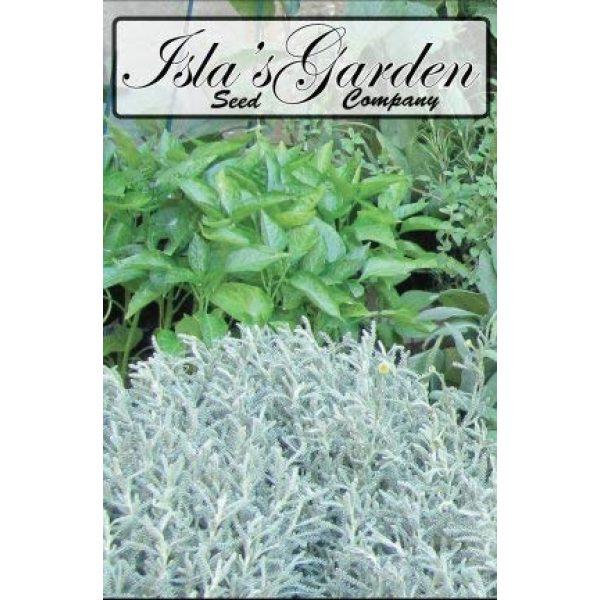 Isla's Garden Seeds Heirloom Seed 5 Evergreen Bunching Nebuka Onion Seeds, 500+ Premium Heirloom Seeds, Fun Addition to Garden! ON Sale!, (Isla's Garden Seeds), Non GMO, 85% Germination Rates, Highest Quality Seeds
