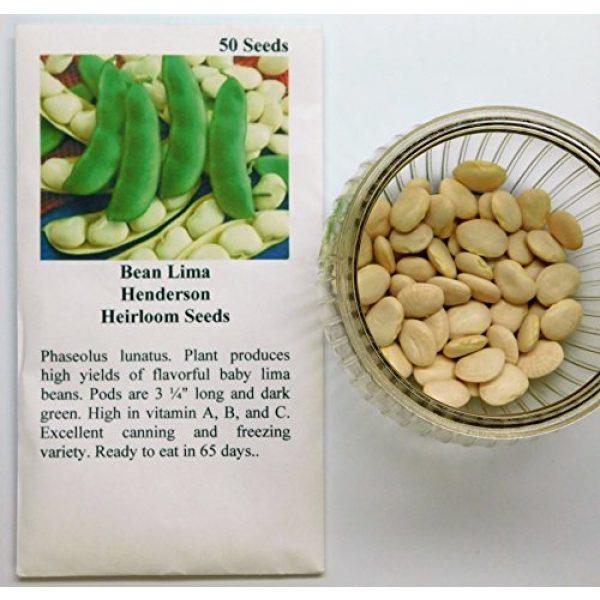 David's Garden Seeds Heirloom Seed 2 David's Garden Seeds Bean Lima Henderson SL4504 (Green) 50 Non-GMO, Heirloom Seeds