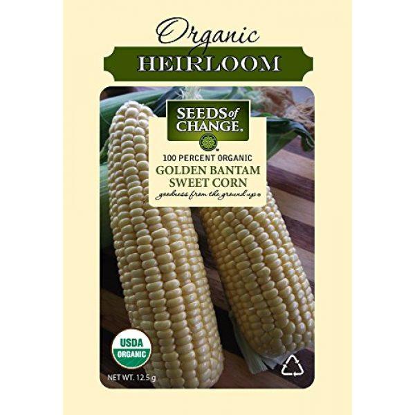 SEEDS OF CHANGE Organic Seed 1 Seeds Of Change 6079 Certified Organic Golden Bantam Corn