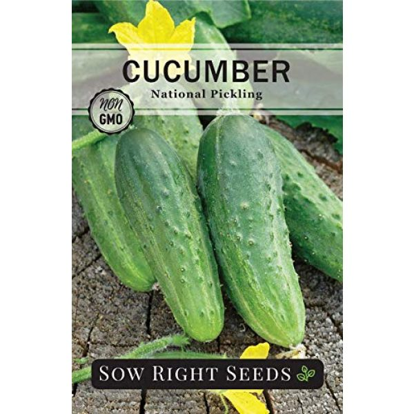 Sow Right Seeds Heirloom Seed 5 Sow Right Seeds - Cucumber Seed Collection for Planting - Armenian, Pickling, Lemon, Beit Alpha Variety Pack, Non-GMO Heirloom Seeds to Plant and Grow a Home Vegetable Garden, Great Gardening Gift