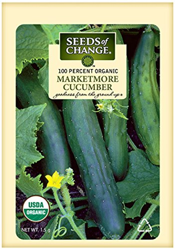 SEEDS OF CHANGE  1 Seeds of Change Certified Organic Marketmore Cucumber