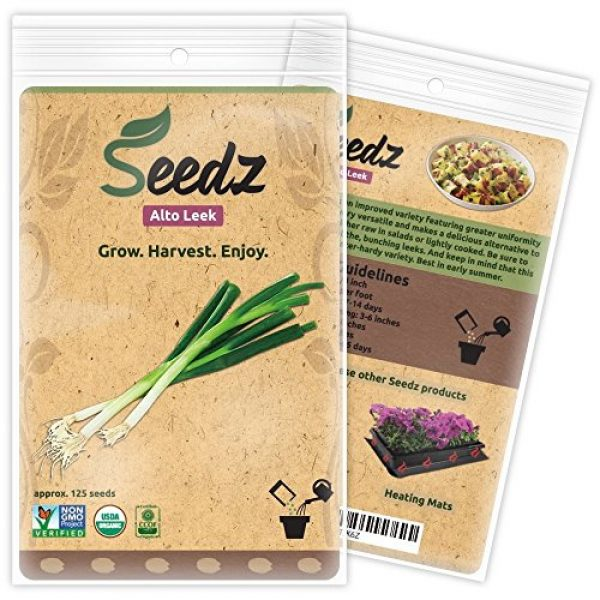 Seedz Organic Seed 1 Organic Leek Seeds (APPR. 125) Alto Leek - Heirloom Vegetable Seeds - Certified Organic, Non-GMO, Non Hybrid - USA