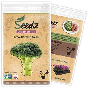 Seedz Organic Seed 1 Organic Broccoli Seeds, APPR. 225, De Cicco Broccoli, Heirloom Vegetable Seeds, Certified Organic, Non GMO, Non Hybrid, USA