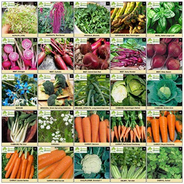 VictoryGardens Heirloom Seed 3 125 Variety XP Heirloom Seed Vault - Premium 100% Non GMO, Non Hybrid, Heirloom Seeds - Packaged for Maximum Shelf Life Storage - Heirloom Vegetable, Herb, and Fruit Seeds.!