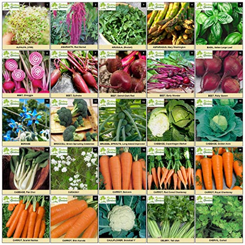 Heirloom Seeds - Packaged for Maximum Shelf Life Storage - Heirloom Vegetable
