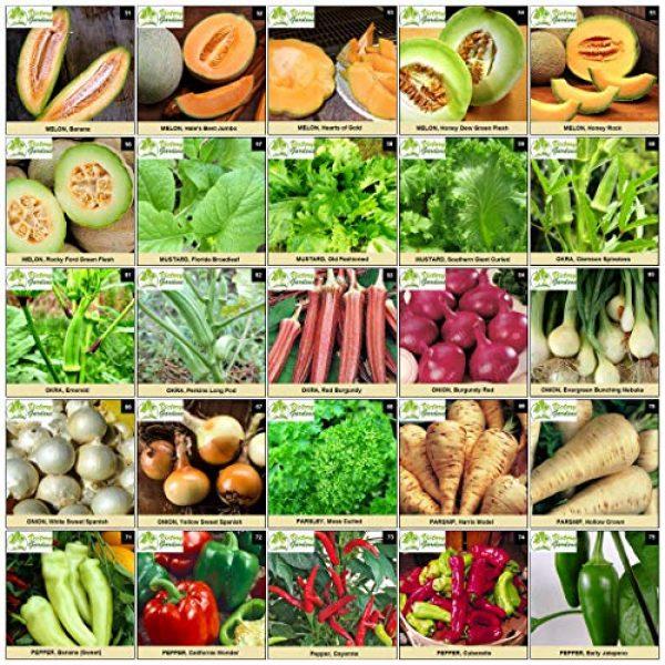 VictoryGardens Heirloom Seed 5 125 Variety XP Heirloom Seed Vault - Premium 100% Non GMO, Non Hybrid, Heirloom Seeds - Packaged for Maximum Shelf Life Storage - Heirloom Vegetable, Herb, and Fruit Seeds.!