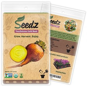 Seedz Organic Seed 1 Organic Beet Seeds, APPR. 225, Touchstone Gold Beet, Heirloom Vegetable Seeds, Certified Organic, Non GMO, Non Hybrid, USA