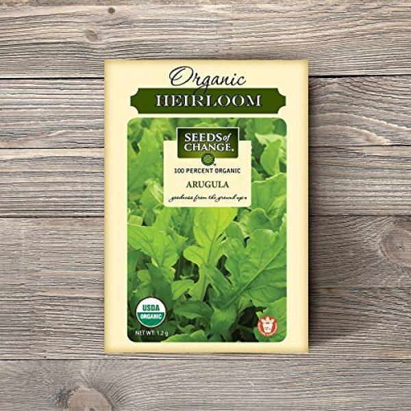 SEEDS OF CHANGE Organic Seed 2 Seeds of Change Certified Organic Arugula