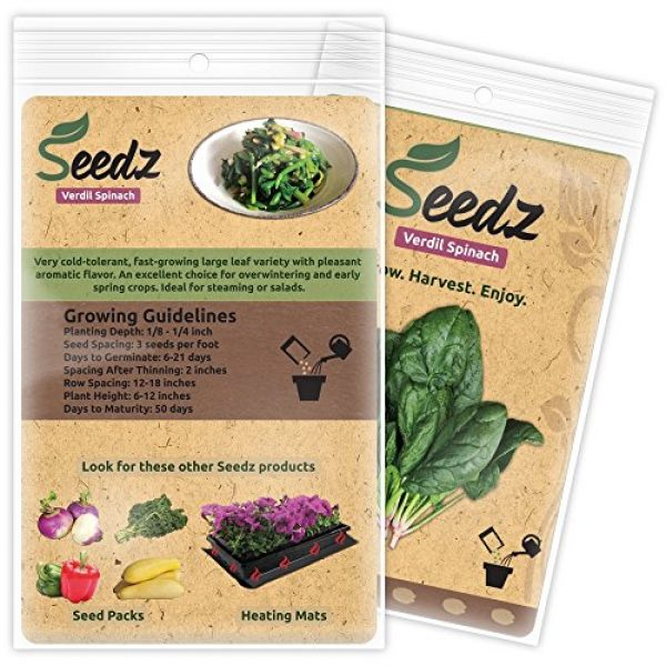Seedz Organic Seed 3 Organic Spinach Seeds (APPR. 225) Verdil Spinach - Heirloom Vegetable Seeds - Certified Organic, Non-GMO, Non Hybrid - USA