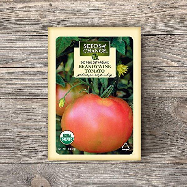 SEEDS OF CHANGE Organic Seed 2 Seeds of Change S10766 Certified Organic Brandywine Heirloom Tomato