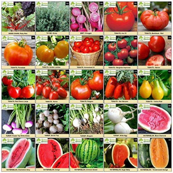 VictoryGardens Heirloom Seed 7 125 Variety XP Heirloom Seed Vault - Premium 100% Non GMO, Non Hybrid, Heirloom Seeds - Packaged for Maximum Shelf Life Storage - Heirloom Vegetable, Herb, and Fruit Seeds.!