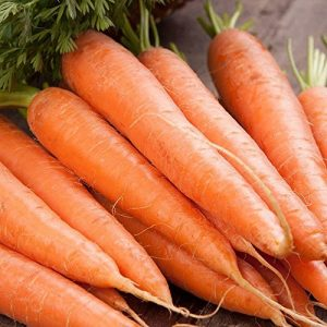 Isla's Garden Seeds Heirloom Seed 1 Scarlet Nantes Carrot Seeds, 500+ Premium Heirloom Seeds, Excellent Carrot! Fantastic Addition to Your Home Garden!, (Isla's Garden Seeds), Non GMO, 85% Germination Rates, Highest Quality Seed