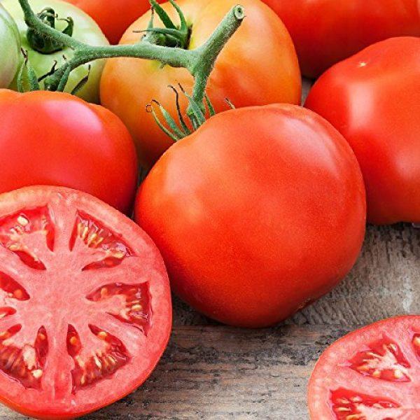 "Isla's Garden Seeds Organic Seed 1 ""Homestead"" Tomato Seeds, 150+ Premium Heirloom Seeds, On Sale & Gardeners Choice Top Seller, (Isla's Garden Seeds), Non GMO Organic, 90% Germination, Highest Quality 100% Pure"