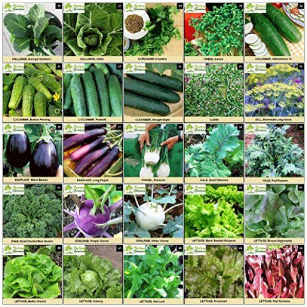 VictoryGardens Heirloom Seed 4 125 Variety XP Heirloom Seed Vault - Premium 100% Non GMO, Non Hybrid, Heirloom Seeds - Packaged for Maximum Shelf Life Storage - Heirloom Vegetable, Herb, and Fruit Seeds.!