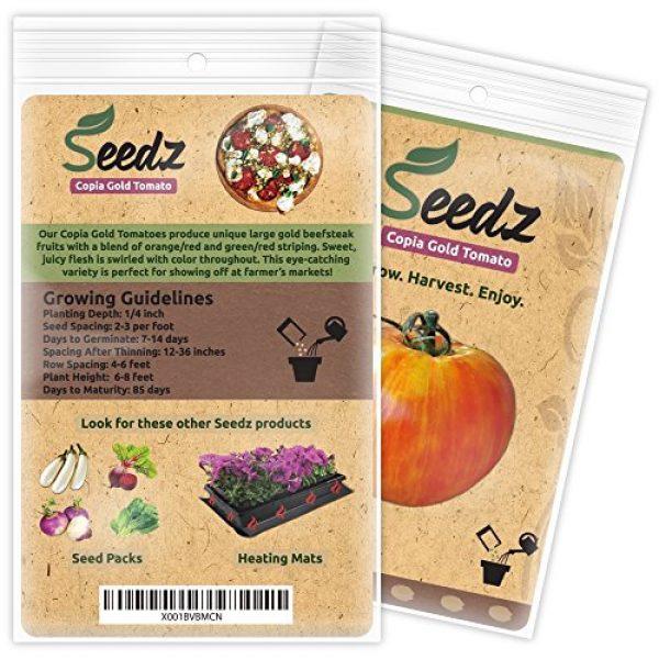 Seedz Organic Seed 3 Organic Tomato Seeds, APPR. 30, Copia Gold Beefsteak Tomato, Heirloom Vegetable Seeds, Certified Organic, Non GMO, Non Hybrid, USA