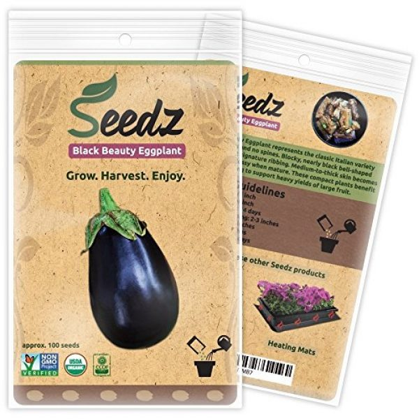 Seedz Organic Seed 1 Organic Eggplant Seeds (APPR. 100) Black Beauty Eggplant - Heirloom Vegetable Seeds - Certified Organic, Non-GMO, Non Hybrid - USA