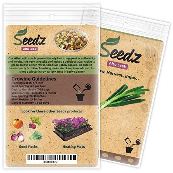 Seedz Organic Seed 3 Organic Leek Seeds (APPR. 125) Alto Leek - Heirloom Vegetable Seeds - Certified Organic, Non-GMO, Non Hybrid - USA
