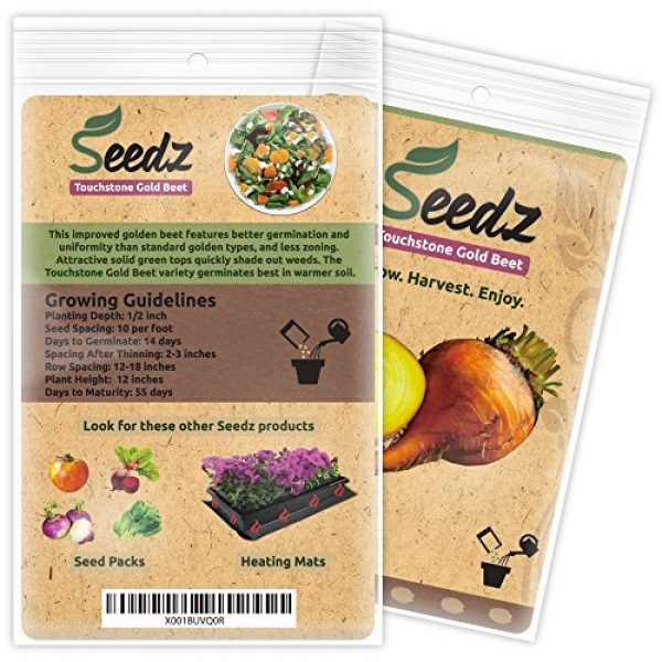Seedz Organic Seed 2 Organic Beet Seeds, APPR. 225, Touchstone Gold Beet, Heirloom Vegetable Seeds, Certified Organic, Non GMO, Non Hybrid, USA