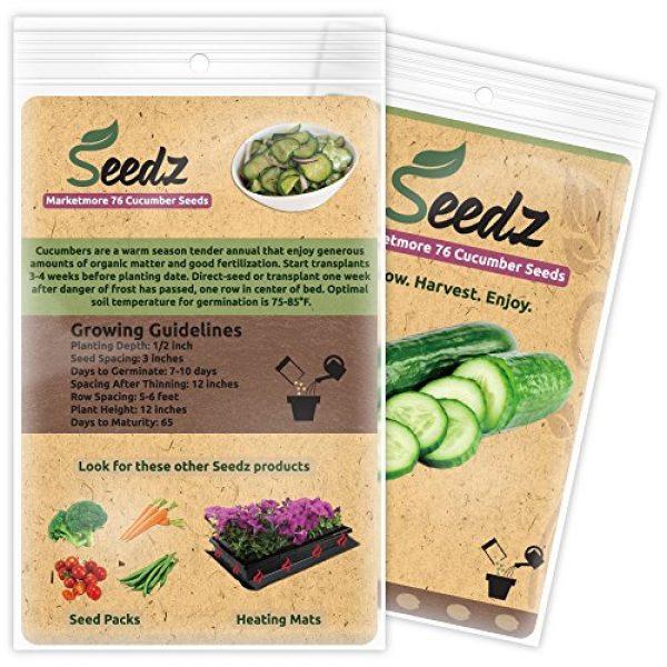 Seedz Organic Seed 3 Organic Cucumber Seeds, APPR. 75, Cucumber Planting Seeds, Heirloom Vegetable Seeds, Certified Organic, Non GMO, Non Hybrid, USA