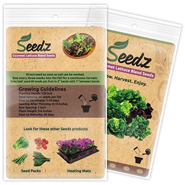 Seedz Organic Seed 3 Organic Lettuce Seeds, APPR. 1,100, Lettuce Blend, Heirloom Vegetable Seeds, Certified Organic, Non GMO, Non Hybrid, USA