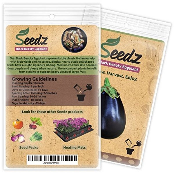 Seedz Organic Seed 3 Organic Eggplant Seeds (APPR. 100) Black Beauty Eggplant - Heirloom Vegetable Seeds - Certified Organic, Non-GMO, Non Hybrid - USA